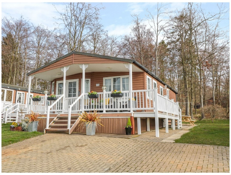 Click here for more about Betty's Lodge